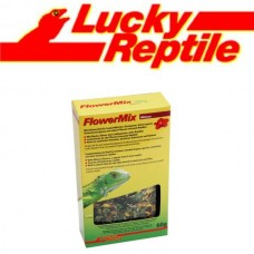 LUCKY REPTILE FLOWER MIX HIBISCUS 10KG
